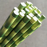Eco Paper Straw - Regular Bamboo