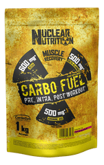 Nuclear Nutrition Carbo Fuel | Pre-workout | intra workout | post-workout | Nutrition Maniacs