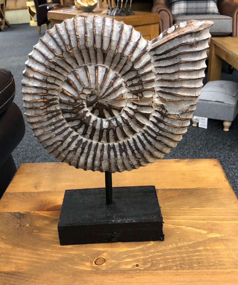 Wooden Ammonite on Stand