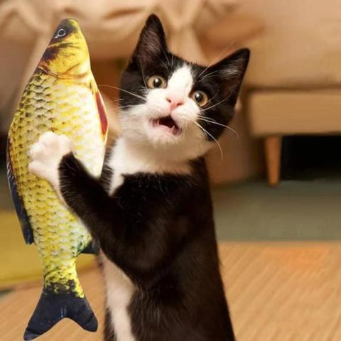 Fish Catnip Toy