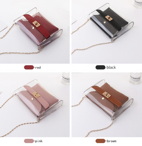 Transparent Shoulder Bag (Free Shipping)