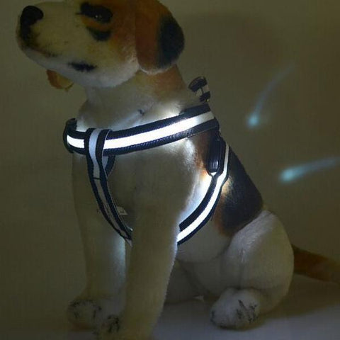 Dog LED Harness