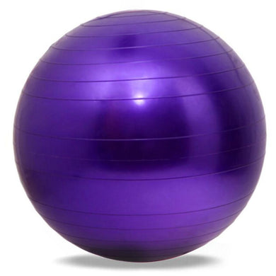 Fitness Stability Ball 65cm (Free Shipping)