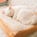 Toast Cushion for Cats