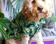 Pet Shirt - Palm Leaves - Small to XLarge and wide neck sizes!