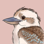 Kookaburra Illustrated Fine Art Print (Limited Edition)