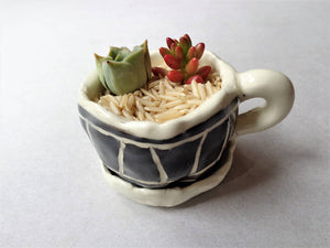 Tiny ceramic black sgrafitto cup succulent planter pot with dripping plate