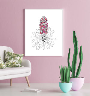 'Banksia Babe' in Pink – Fine Art Print by Xanthe Grundy of Wife-made