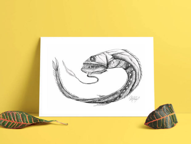 Dragon Fish Art Print - Nautical Drawing - Deep Sea Animal - A4