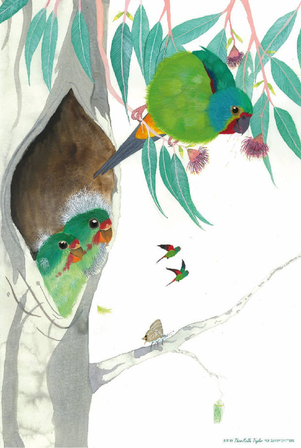 100% linen tea towel - Swift Parrots and Young