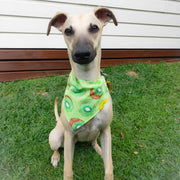 Personalised Dog Bandana | Kiwi Fruit Novelty Print