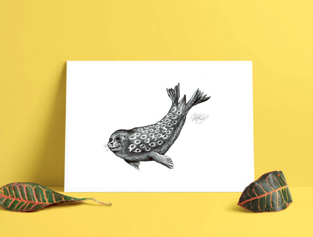 Seal Art Print - Nautical Drawing - A4