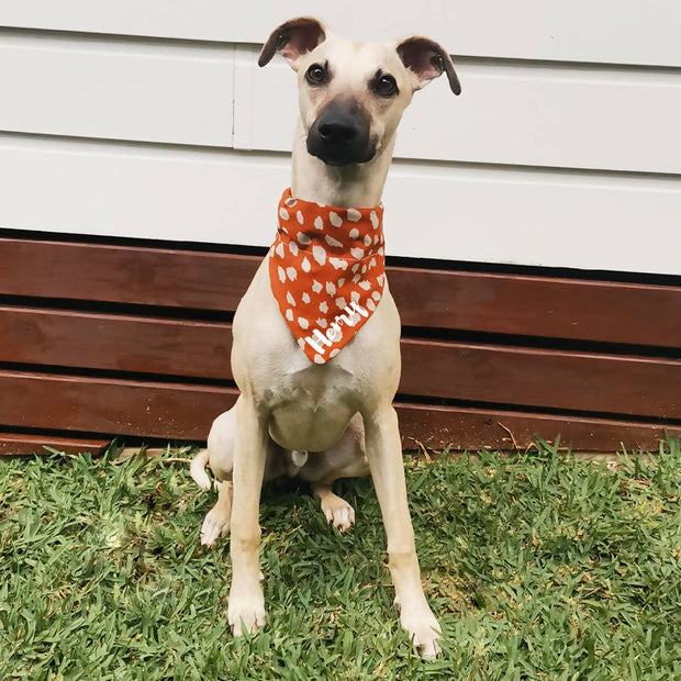 Personalised Dog Bandana | Burnt Orange