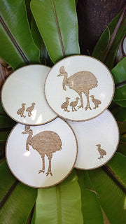 Home ware - Cassowary Drink Coasters