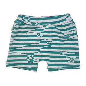 dinosarus shorts, t-rex toddler shorts, cuffed shorts