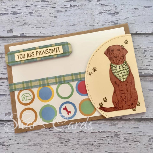 You are Pawsome! Pet themed card