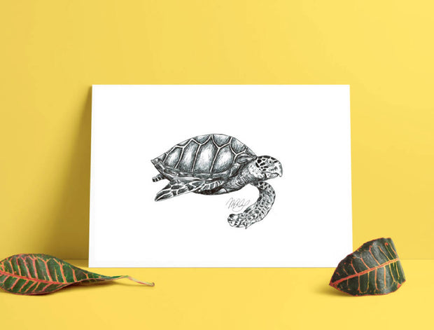 Sea Turtle Art Print - Nautical Drawings - A4
