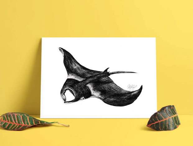 Manta Ray Art Print - Stingray - Nautical Drawing - A4