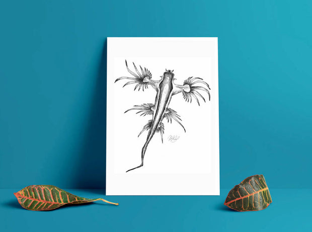 Dragon Nudibranch Art Print - Nautical Drawing - A4