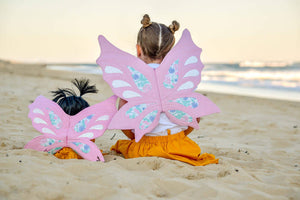 Teddy and me Fairy or Dragon wings set