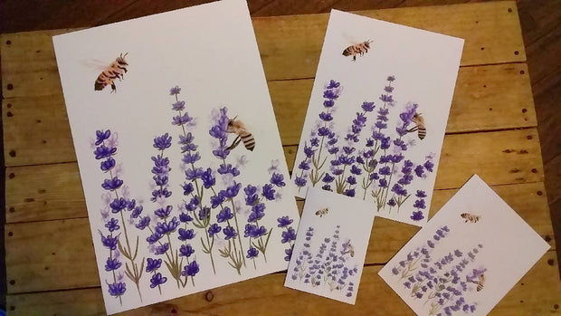 English Lavender and Busy Bees A3 Print