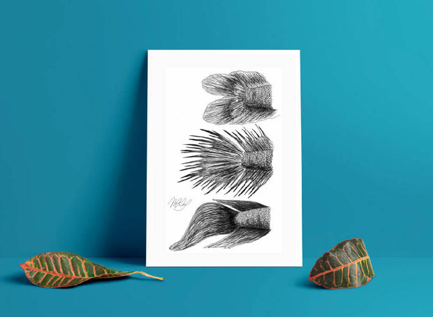 Betta Fish Art Print - Fighter Fish Drawing - A4