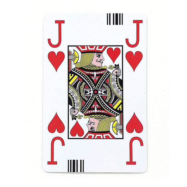 Jannersten Bar Coded Large Figure Cards (Plastic)- Pack of 2 decks - NEW