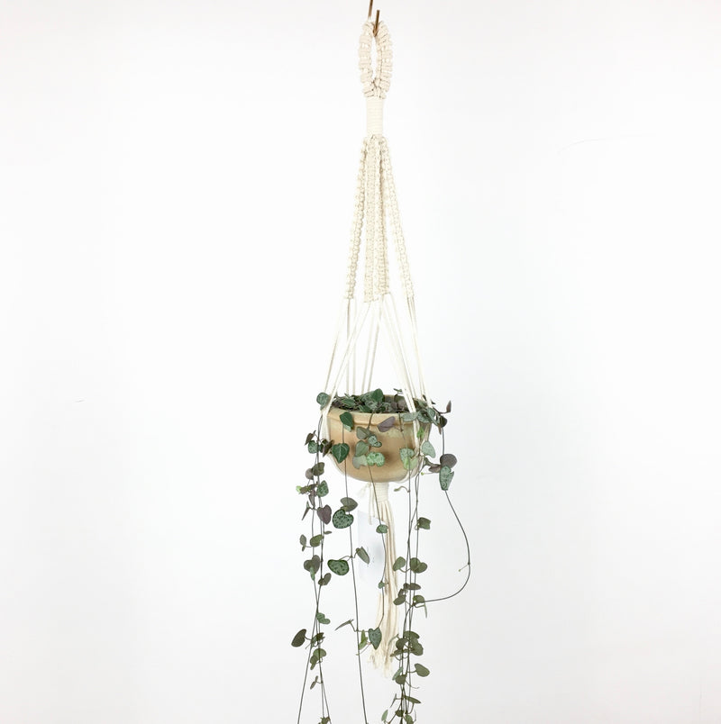 Macramé hanger - medium