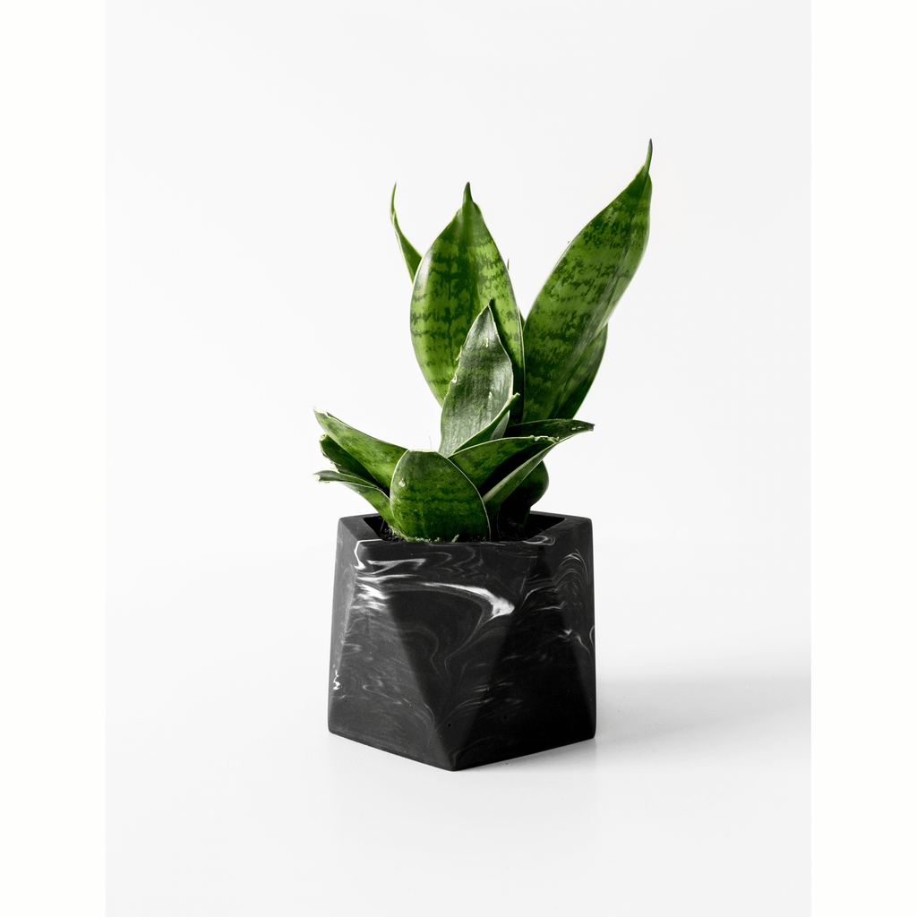 Potje 'Mare' (medium) - Black Marble
