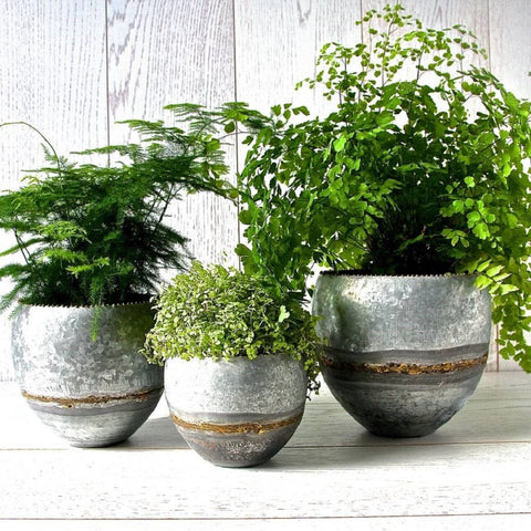 Zinc planters – set of three
