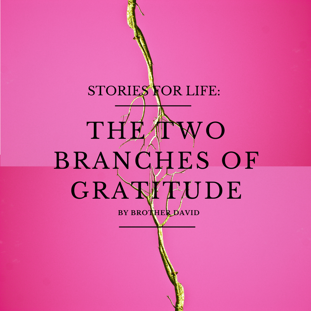 The Two Branches of Gratitude