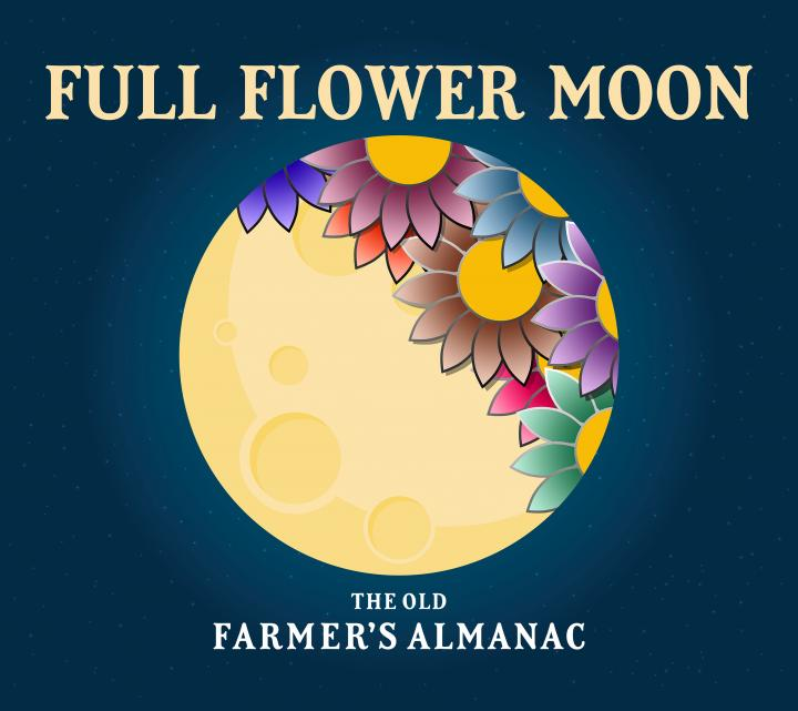 Full Moon Ceremony: 7th May 2020