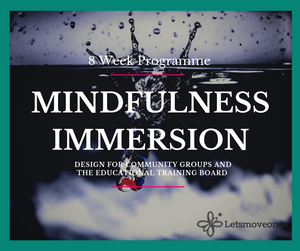 Mindfulness Immersion