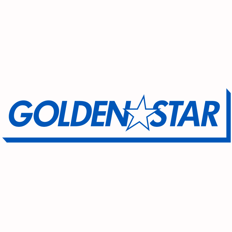 Kota Ibushi 'Golden Star' 2019 T-Shirt