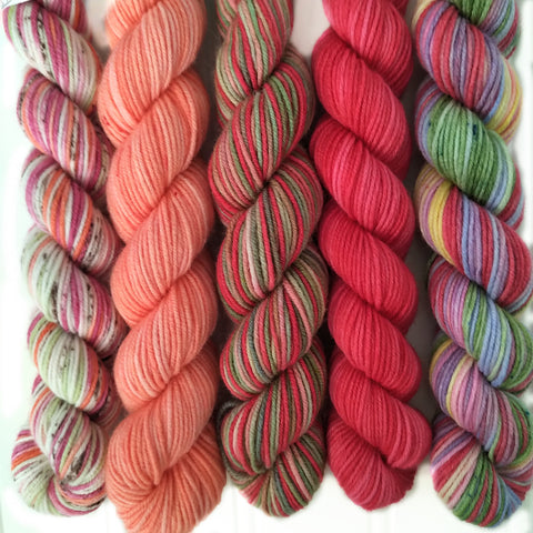 Multi Colors Mini Skein Set of 5 OOAK