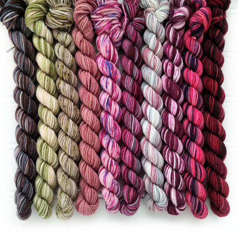 Dyer choice blend Mini Skein Set of 10    OOAK