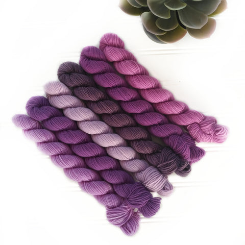 Mini Skein Set of 6 - Purples sampler