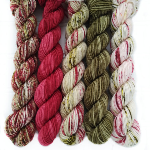 Mini Skein Set of 5  - Rustic Cabin