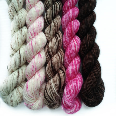 Copy of Mini Skein Set of 5 2OAK