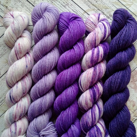 Passion For Purple  Mini Skein Set of 5