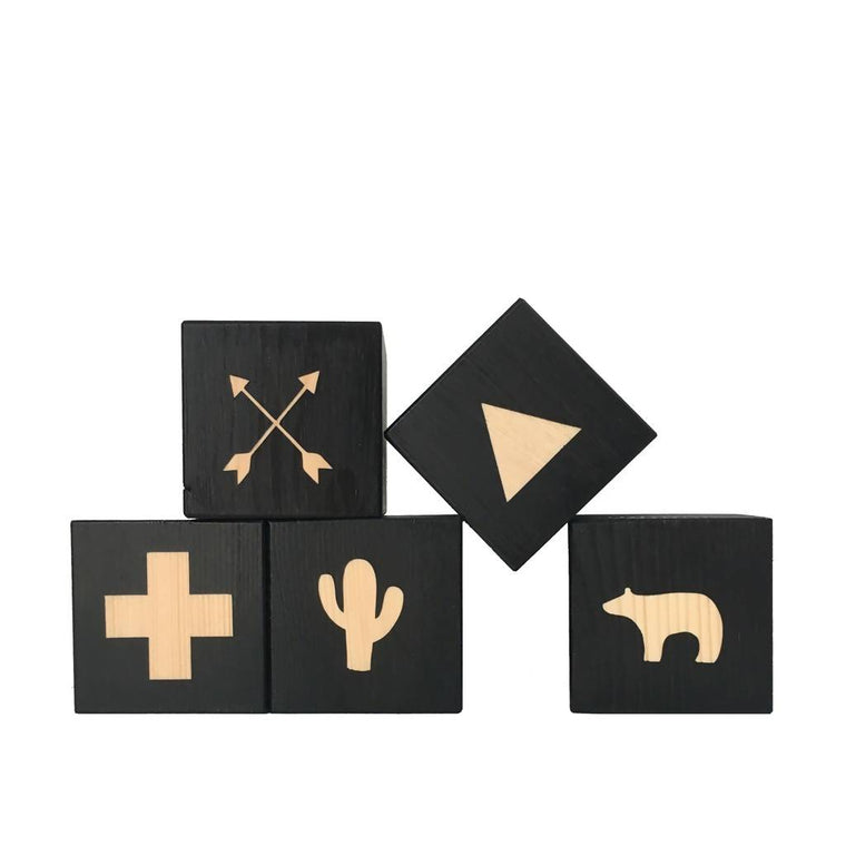 Adventurer Play Cubes