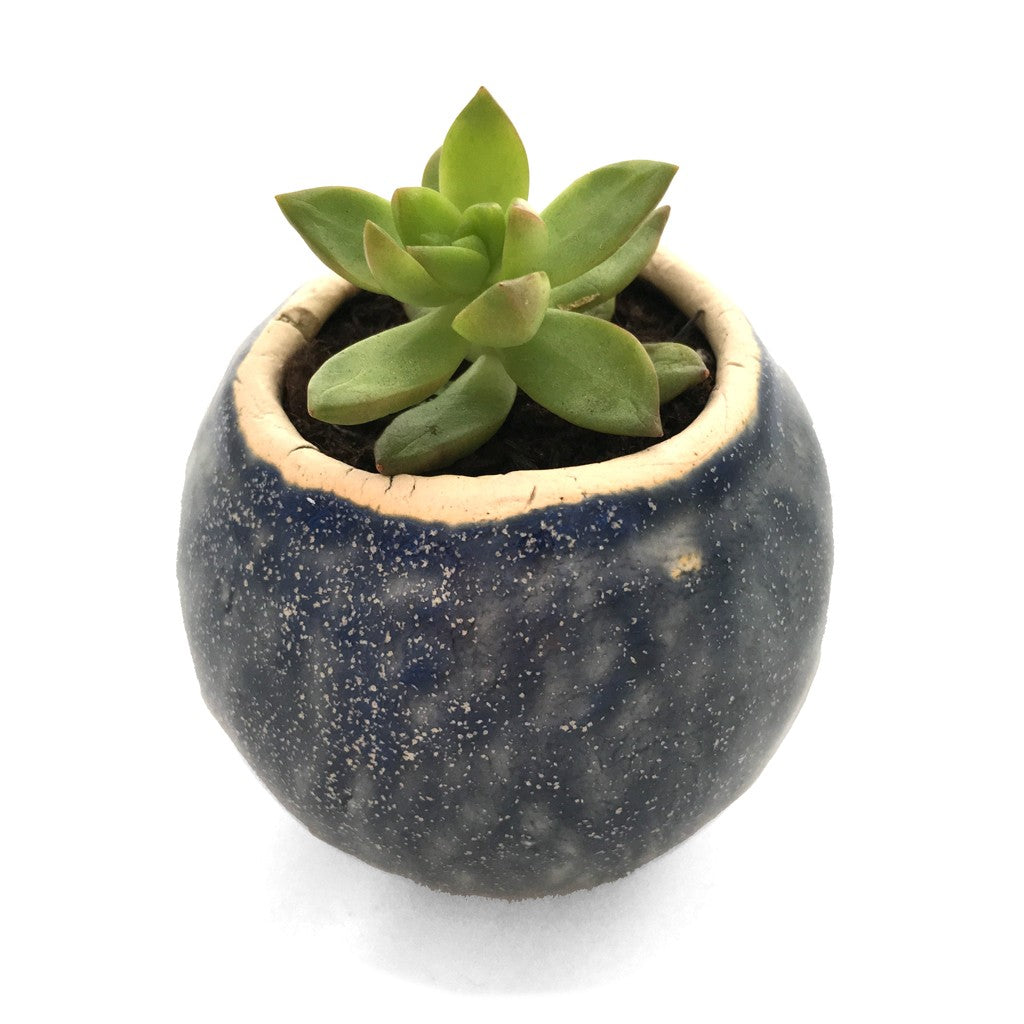 Small Wobble Bottom Ceramic Pot