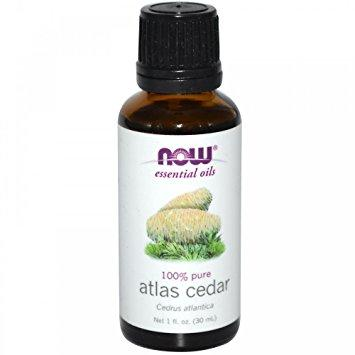 Atlas Cedar Oil - 1 fl oz