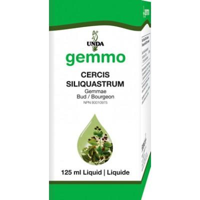 Cercis Siliquastrum - 125 ml