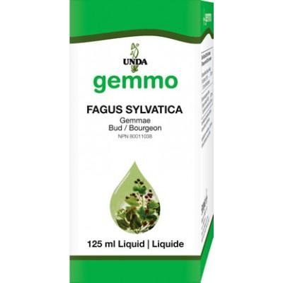 Fagus Sylvatica - 125 ml