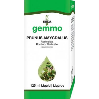 Prunus Amygdalus Root Bark - 125 ml