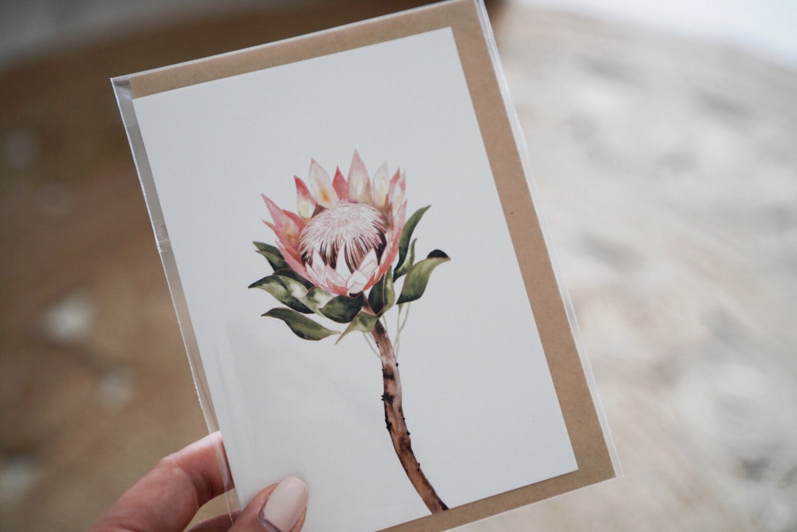 The-Lovely-Other-Illustration-Artwork-Giftcard-Protea