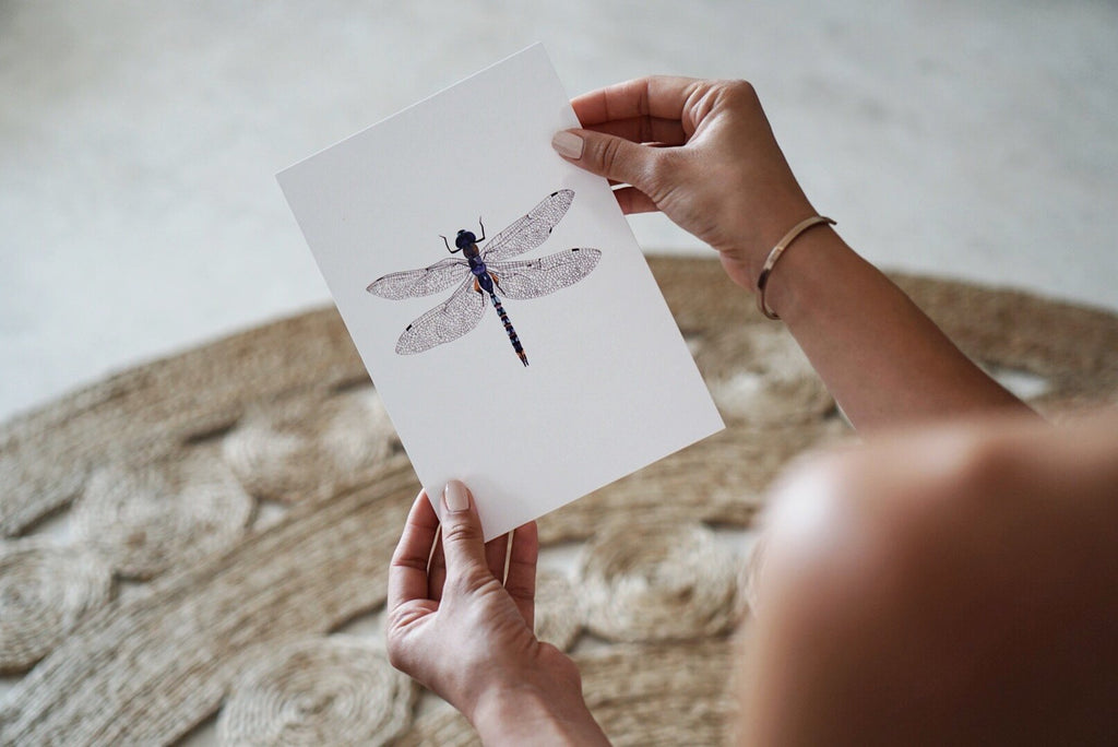The-Lovely-Other-Illustration-Artwork-Print-Azure-Dragonfly