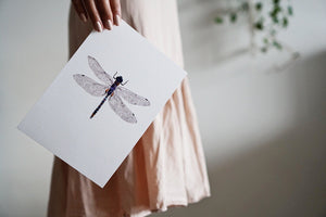 The-Lovely-Other-Illustration-Artwork-Print-Azure-Dragonfly-2