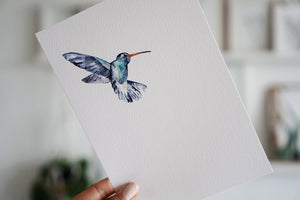 The-Lovely-Other-Illustration-Artwork-Print-Calliope-Hummingbird-3